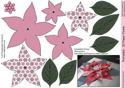 Deep Pink Poinsettia 3D Paper Flower on Craftsuprint designed by Sandie Burchell - New Category 3D Paper Flowers - Beautiful Poinsettia. Use these to create embellishments for your cards, gifts and make flower arrangements. Try doing a Christmas Table Decoration. You could even apply a pipe cleaner wrapped in Green crepe paper to make stems for a flower arrangement that will last and last. It will be useful for lots of your projects. Print it out several times to put on a gift or use a ...