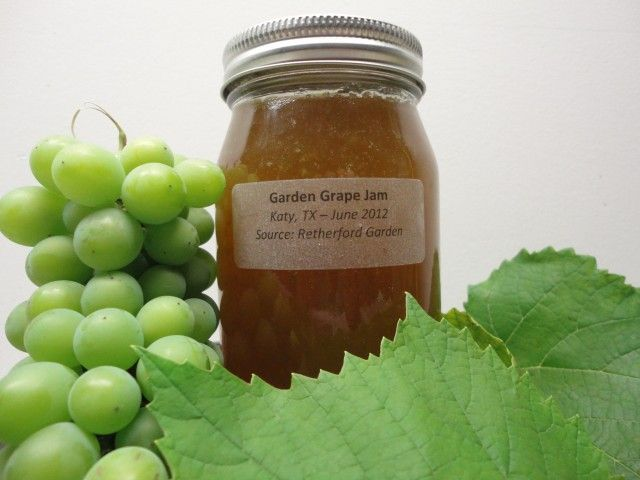 Homemade Garden Grape Jam, Welch's Take Note! | We are not Foodies