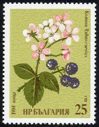 via http://www.plantstamps.net/