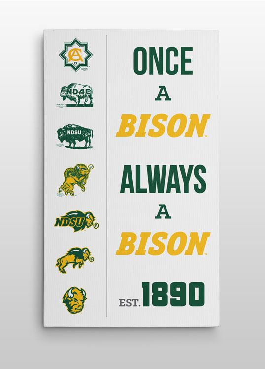 """As the saying goes, """"Once A Bison, Always A Bison."""" Young or old this saying rings true, due to the Tradition at NDSU, now brought to life with this canvas print. #NDSU"""