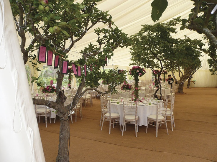 17 best images about marquee wedding on pinterest for Indoor marquee decoration