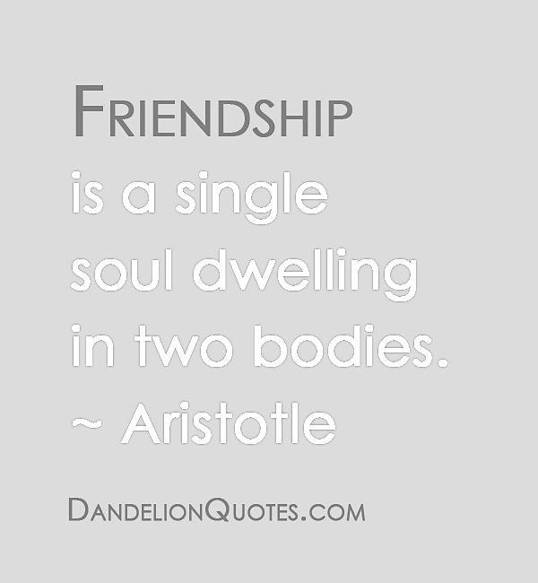 friendship//