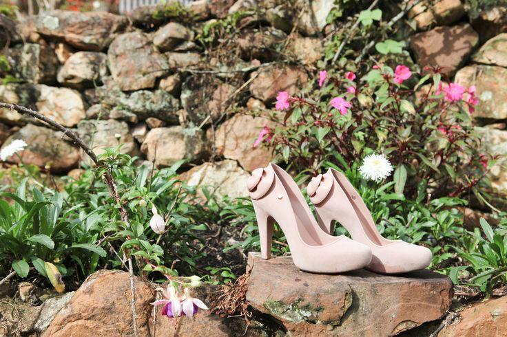 Zapatos  Novia Arreglo