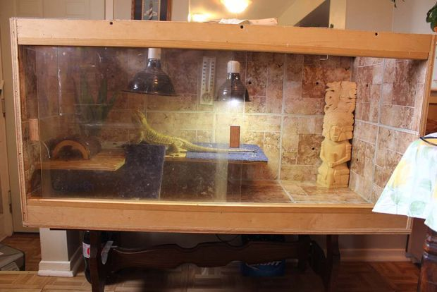 DIY Bearded Dragon cage