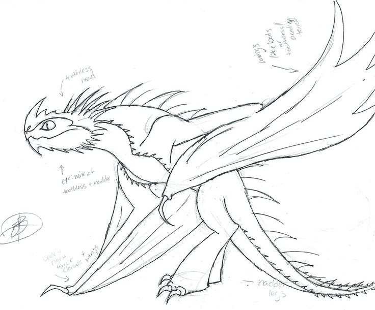 amazing baby dragon coloring pages - photo#16