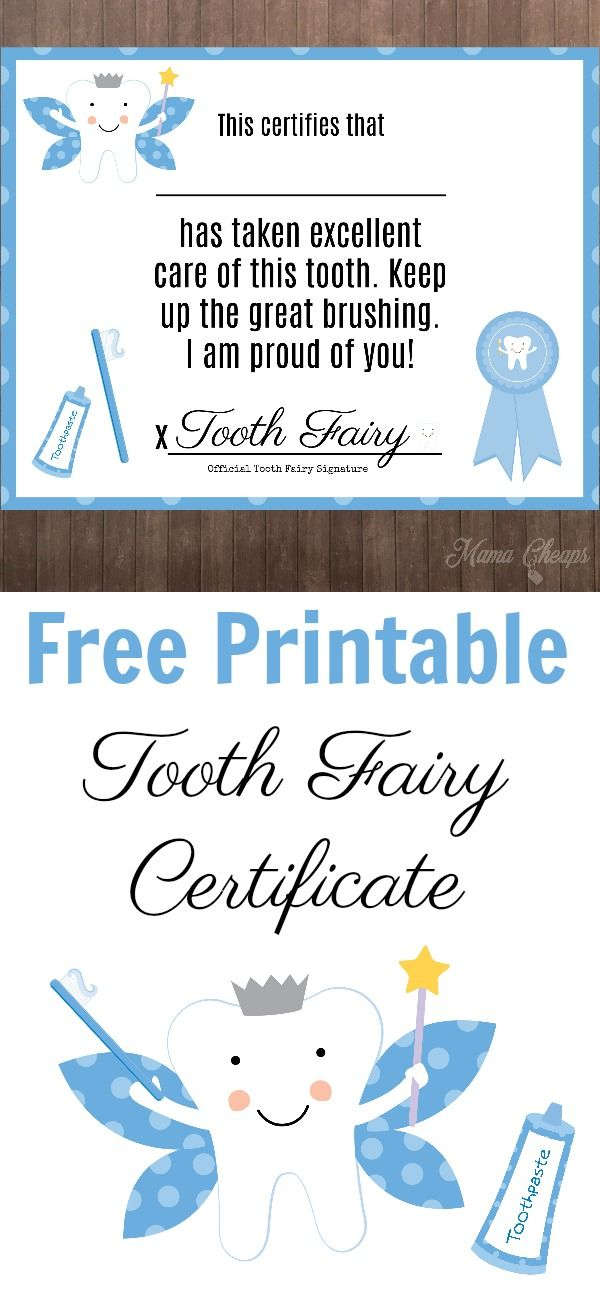 photograph relating to Tooth Fairy Ideas Printable named Free of charge Printable Teeth Fairy Certification RANDOM Guidelines