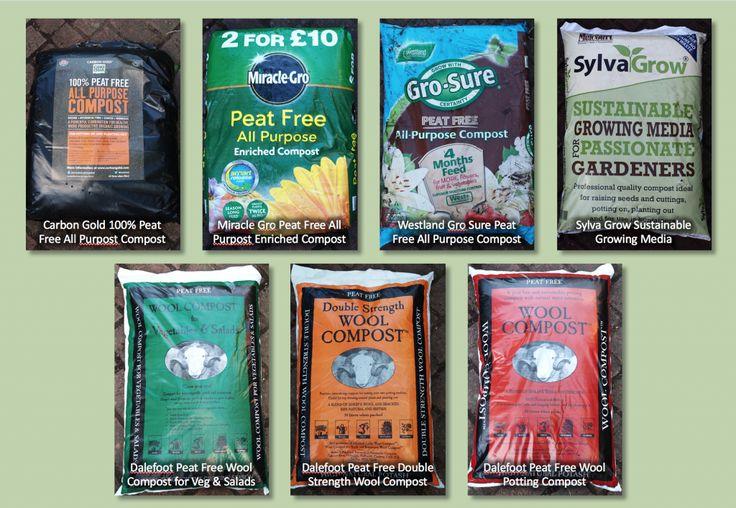 Peat Free Compost Trial 2016 - Pumpkin Beth