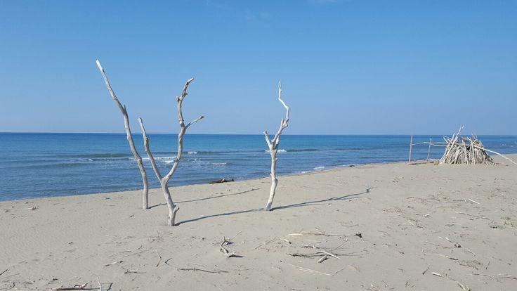 **Parco Naturale della Maremma (beach, walking paths) - Alberese, Italy