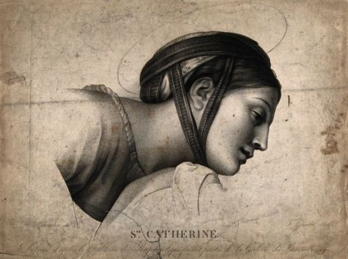 St. Catherine, Patron Saint of ArtistsHoly Art, Portraits Drawing, Art Design, Eypswz5Yhlijpg 735549, Art Maine, Catherine Zeta-Jon, Saint Catherine, Religious Iconography, 735549 Пикс