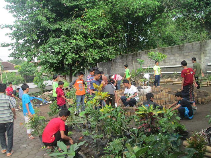 Gardening pr0gram