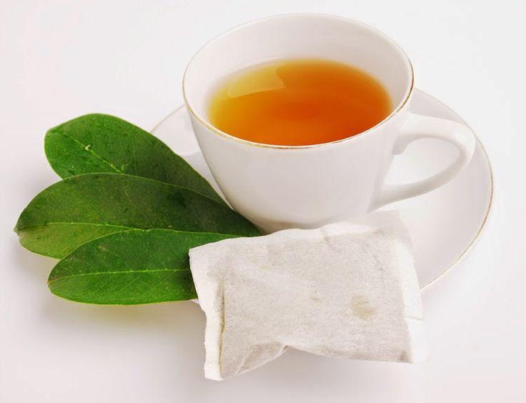 Daun sirsakteh daun sirsak khasiat teh daun sirsak manfaat teh daun sirsak
