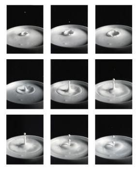 Harold E. Edgerton, Milk Drop Sequence, 1936