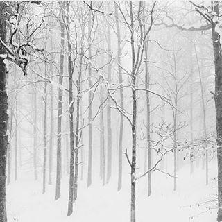 Я посылаю вам пушистый белый снег и зажигаю праздничные свечи. Желаю искренне, чтобы в домах у всех уютно было каждый вечер. #kikilab