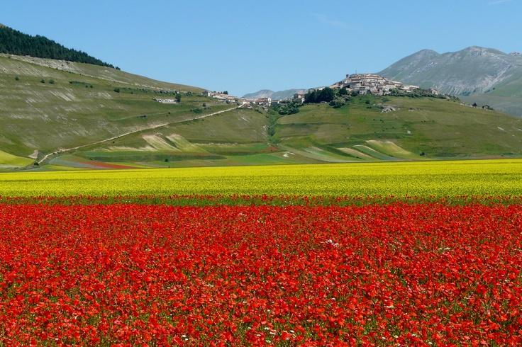 Looking forward to visiting Umbria again next week!