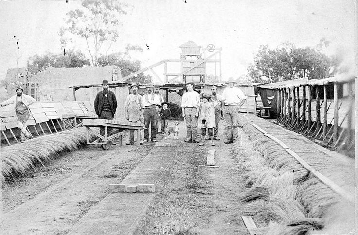The drying yard at the Sawyer Brickworks in Horsham, c1890..