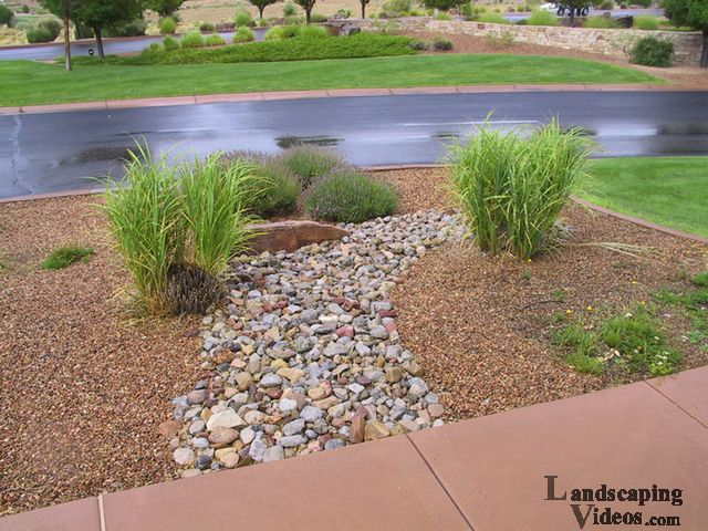 67 best southwest landscaping images on pinterest for Simple landscaping plants