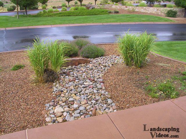 67 best southwest landscaping images on pinterest for Southwest landscaping plants