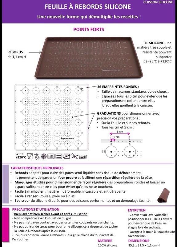 Fiche Tupperware : Feuille à rebords silicone