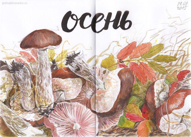 #sketchbook by Polina Khoronko: Скетчбук 2015 #watercolor #mushrooms #autumn #foodillustration