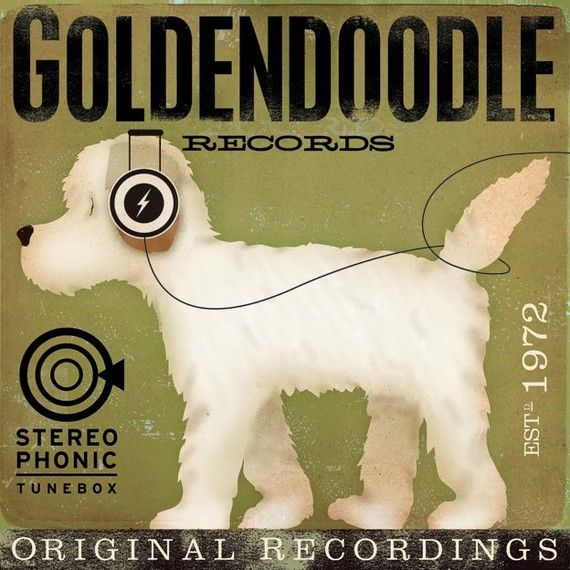 Goldendoodle Records original illustration graphic art  on canvas 12 x 12 x 1.5 by stephen fowler