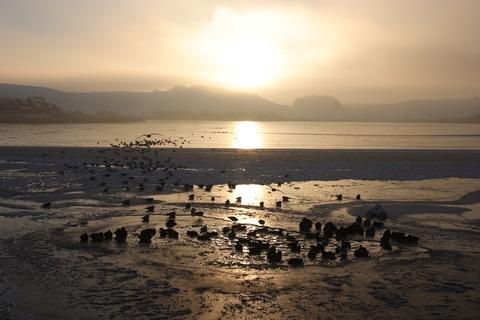 Playa de Lemvig #dinamarca. Paisajes de ensueño. Intercambio de casa a 10 min de esta playa, cerca de bosques y de mercados locales. Vacaciones sin estrés y cerca de la naturaleza.