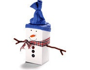 1000 images about cub scout christmas crafts on pinterest for Cub scout ornament craft