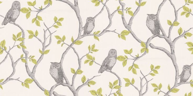 Little Owl (40637) - Albany Wallpapers - A sweet branch and leaf design created with fine horizontal lines. In the branches sit little sleepy owls. Shown in the grey and apple green on cream colourway. Please request sample for true colour match.