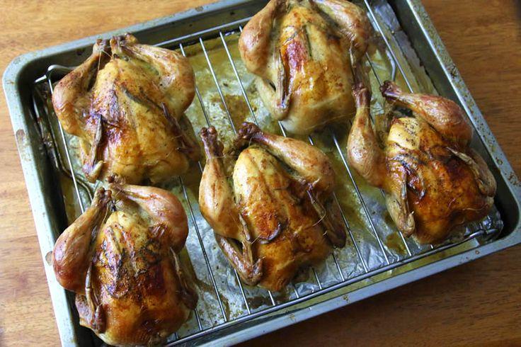 roasted cornish game hens garlic herbs lemon rosemary thyme recipe browned crispy moist tender