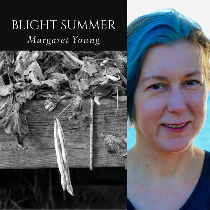 FINISHING LINE PRESS BOOK OF THE DAY:  Blight Summer by Margaret Young  $13.99, paper  https://www.finishinglinepress.com/product/blight-summer-by-margaret-young/  Margaret Young's poems and essays have appeared in Cider Press Review, The Journal, Phoebe, Superstition Review, and numerous other print and online journals