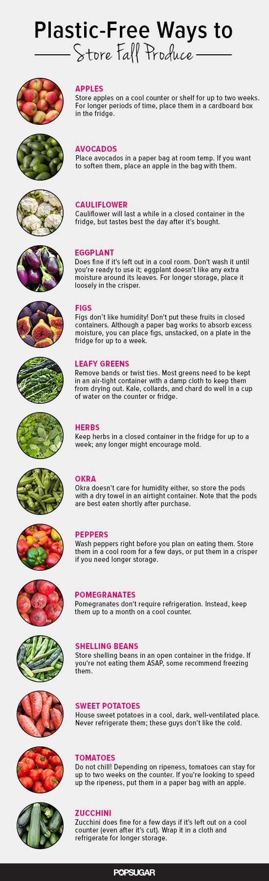 Check out our eco-friendly produce storage guide!