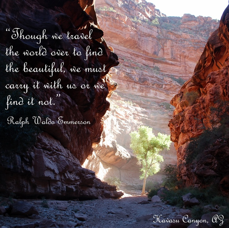 Grand Canyon Quotes: 1000+ Images About Travel Quotes On Pinterest