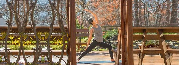 Yoga and meditation provided Youngsun Switzer with the balance and control she needed to recover from a rare form of cancer- and the expertise of our Orthopaedic Oncologists helped her beat it. Read more about her journey.