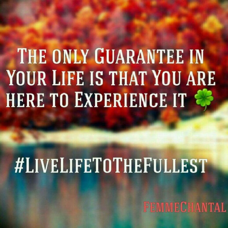 #FemmeChantal #Quote #LiveLifeToTheFullest #Guarantee #Experience #Expansion #OwnBestFriend #Love #ConsciousAwareness #Coach #Writer #Author #Blogger #Editor #Translator #Revisor #QuoteMaker #LOA #Guidance #Synchronicities #Authentic #Responibility #Empowerment #Enjoy #Sense