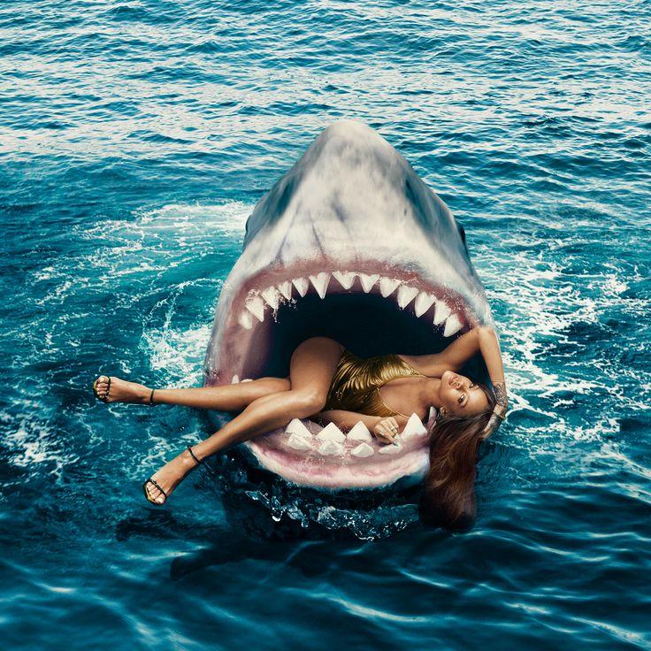 акула прикол картинка рак