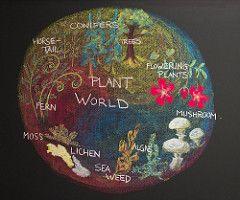 5th Grade: Botany; Plant World (ArneKaiser) Tags: 5thgrade edited botany chalk chalkart chalkboard chalkdrawings flagstaff arizona unitedstates waldorfjourney mrkaisersclass pineforestschool waldorf flickr