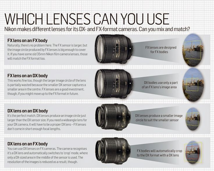 which lenses can you use FX or DX | mine