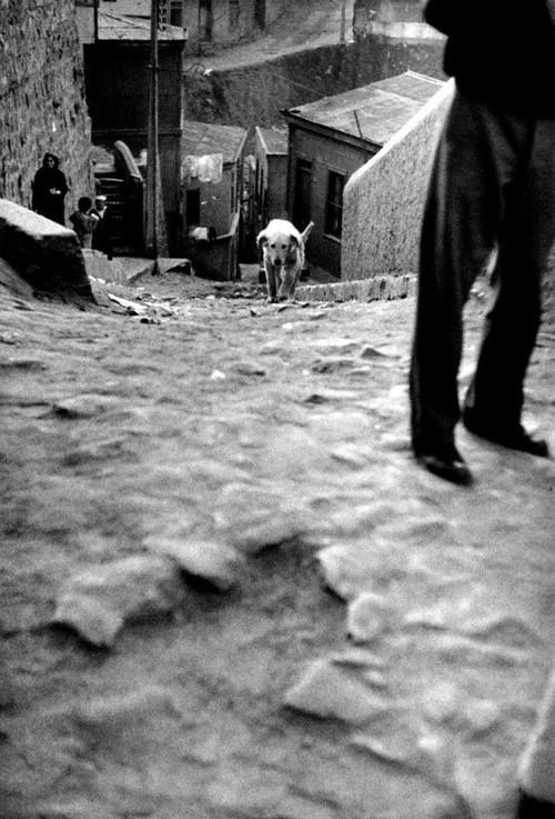 •• © Sergio Larrain •• Valparaíso, Chile, 1963.