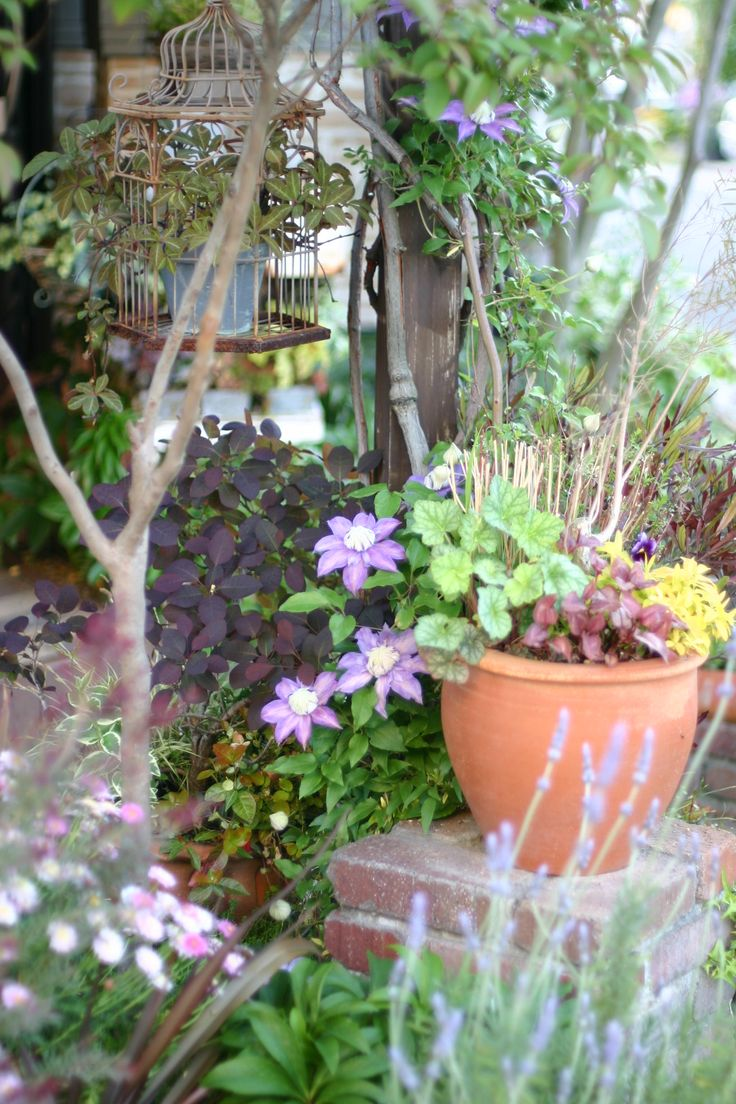 best ideas for my garden images on pinterest