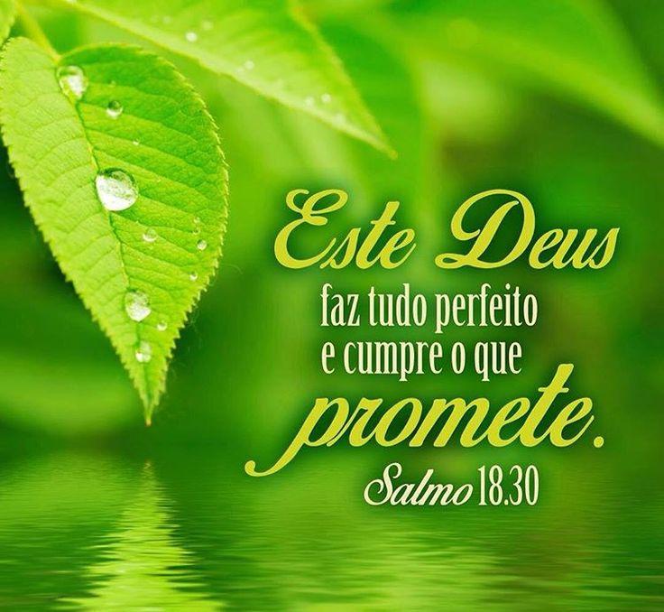 """➡️""""Este Deus faz tudo perfeito e cumpre o que promete."""" Salmos 18:30 NTLH  ✨✨✨✨✨✨ #amem #salmos #deus #jesus #salvador #salvação #senhordaminhavida #senhor #vida #vidaeterna #versículo #versículododia #bíblia #palavradodia #fé #perseverar #crer #aleluia #gloriaaDeus #libertação #novoconvertido #novaconvertida #conversão #Jesusestávoltando #ungido #ungida #ungidodosenhor #ungidadoSenhor ✨✨✨✨✨✨ Créditos da imagem: Sociedade Bíblica do Brasil @sbb.Brasil"""