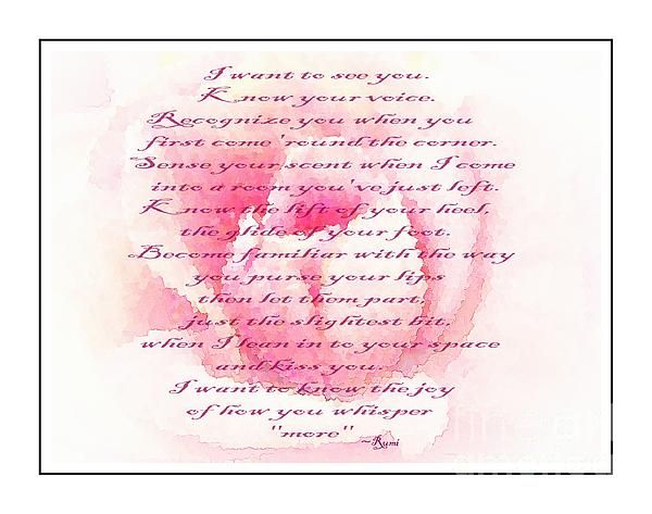 Rose and Rumi quote