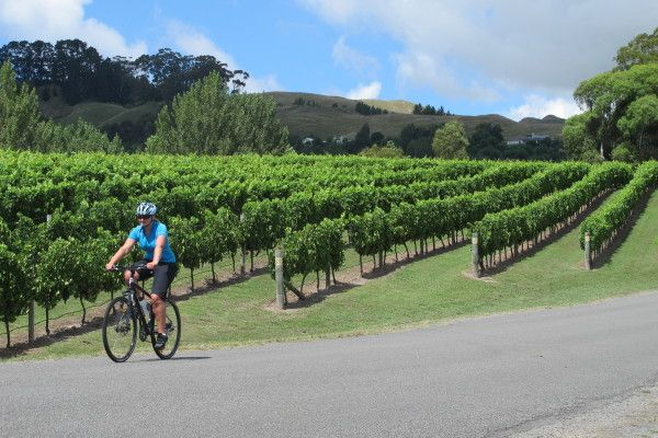 Cycling Tour Hawkes Bay NZ - Gourmet Small Group
