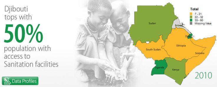 DJIBOUTI         Facts on sanitation facilities.