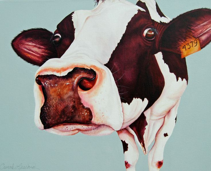 Cow Antoinette 16''x 20'' acrylic on canvas . vendu/sold