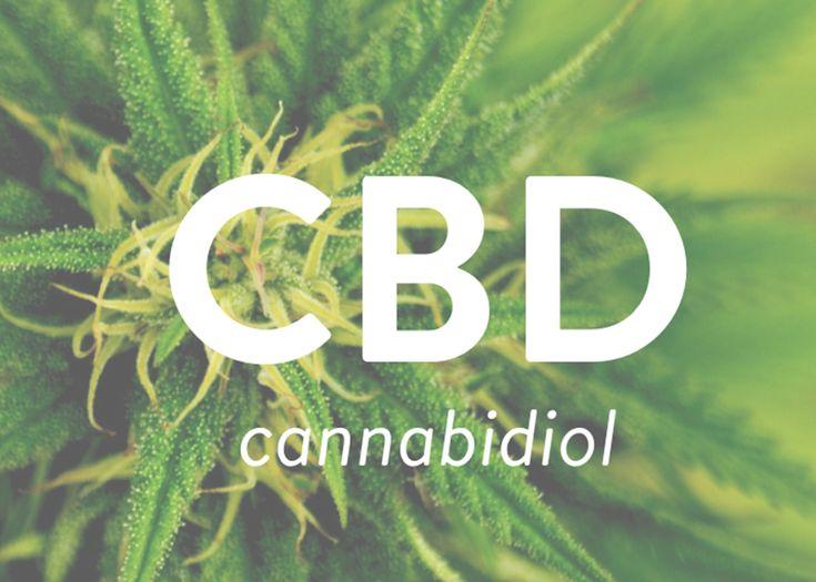 12 best Marry Jane - Finest Swiss Cannabis images on Pinterest ...