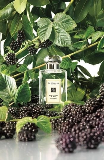 Smell summer, Jo Malone perfume. This perfume comes in many beautiful fragrances.