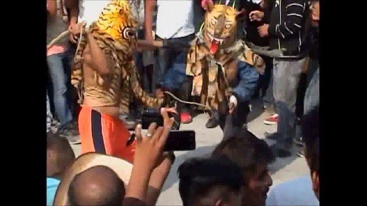 Peleas de Tigres en Zitlala (a Puro Chingadazo II)