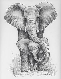 Pen and Ink drawing of mama and baby elephant – Print reproduction – Beata Jonynė