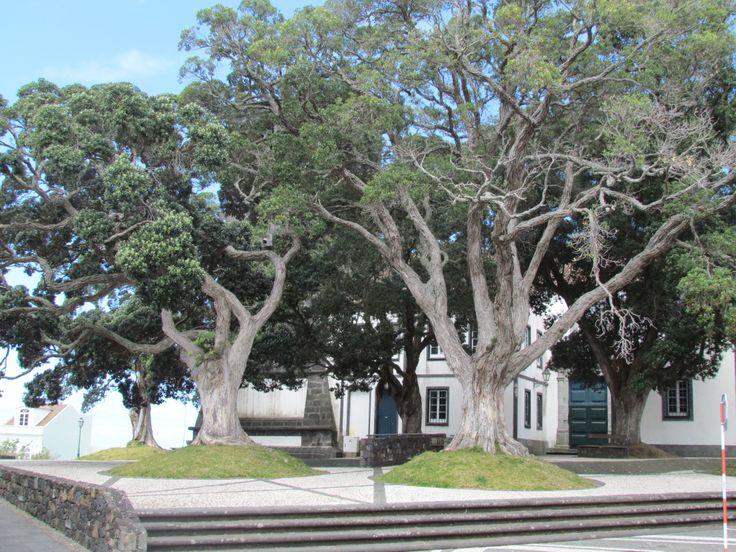 Sao Miguel - Azores, Portugal