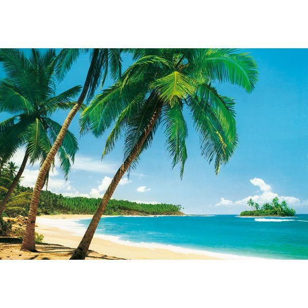 Isle Tropical Wall Mural 241 By Ideal Decor Part 89