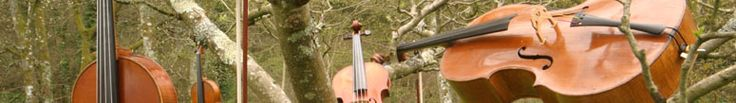 How to book the Rosewood String Quartet.Based in Devon, providing music for weddings, conferences, parties and events in Devon, Cornwall, Somerset and across the South West UK